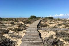 Opuštěný chodník na ostrově Další z objevů na ostrově Ilha Deserta